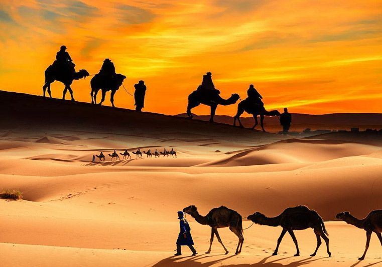 Key Pieces of Desert Safari Tours